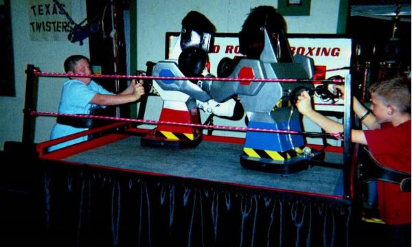 Robotic Boxing Robots