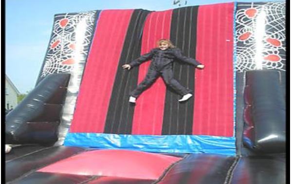 Velcro Fly Wall